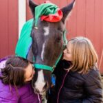 Fourth Annual Holiday Pictures with Ponies